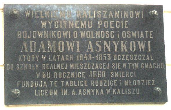 Aneta Kolańczyk Dzieciństwo I Młodość Adama Asnyka Kalisz